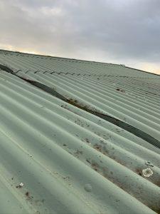 Asbestos sheet