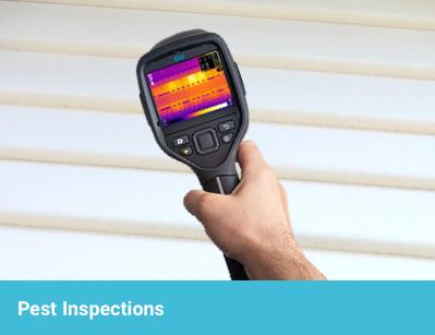 iCheck Pest Inspections